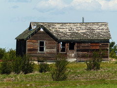 Once a family home (annkelliott) Tags: alberta canada seofcalgary longdrive house home old wooden weathered building architecture grass bushes outdoor summer 20july2016 fz200 fz2004 annkelliott anneelliott