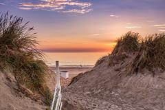 Dunes of Blokhus (Curtski22) Tags: blokhus denmark light ocean sea seaside shore silhouette sunset water