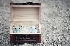 (4) (leoooona08) Tags: rabbit bunny bird cat penguin sheep felting chick totoro kawaii neko tako