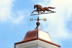 107.  Weather Vane - 115 pictures in 2015 (Krasivaya Liza) Tags: 107 115picturesin2015 chastain park atl atlanta ga georgia weathervane horse stables 115pictures 2015 april apr south southern charm city urban cityscape beltline 115 the115 photo challenge photography group flickr