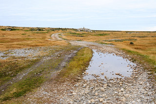 Road to Black Eagle Camp Monument near Stanley / Falkland Islands