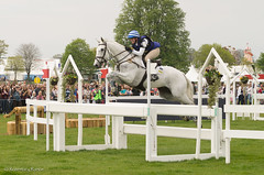 Badminton 2016  Olivia Wilmot (Foxy L-plate) Tags: horses sport may crosscountry 2016 equines horsetrials 3dayeventing badmintonhorsetrials oliviawilmotoncooldancer rosemaryrance