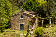 CAMINO PRIMITIVO. ERMITA DE SANTA IRENE (bacasr) Tags: trees espaa travelling verde green church rural forest countryside spain rboles iglesia viajando galicia backpacking bosque hermitage caminodesantiago ermita caminando acorua caminoprimitivo thewayofsaintjames caminofrancs santairene pedrouzo