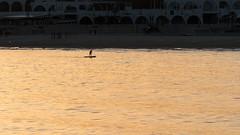 (wingspan91) Tags: sea beach sunrise dawn boat surf rowing