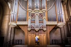 Im Dom (Dagmar' s Fotos) Tags: church dom kirche atmosphere instrument atmosphre orgel