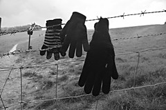 Lost Keys and Gloves (andystevenson64) Tags: fence lost wire key gloves barbed
