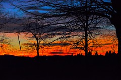 hdr (ecordaphoto) Tags: sunset tree nature alberi nikon natura nikkor rosso hdr lanscape sera dx 55300 d5100