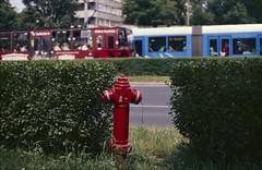 Fireplug (W.Glow) Tags: red colour film hydrant polaroid minolta tram slide iso 100 fireplug wroclaw srt 303 hdf1