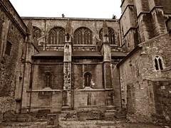 Oviedo, Asturias, Espaa. Catedral. (Caty V. mazarias antoranz) Tags: asturias oviedo botero catedraldeoviedo laregente montenaranco principadodeasturias labellalola turismoenoviedo