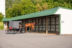 15-2976 (George Hamlin) Tags: horse dutch sign photography photo george pennsylvania gap houston run amish east stop rest shelter decor buggy hamlin