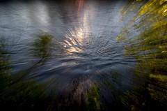 Reflets de l'aube (zventure,) Tags: abstract soleil zoom vert bleu arbres reflets var bois lignes abstrait aube alpesmaritimes cach buissons saintlaurentduvar bordsduvar zventure