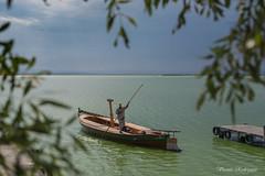 albufera (vicente r0driguez) Tags: valencia 35mm atardecer nikon barca embarcadero albufera d5200