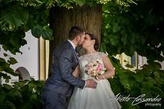 Under the trees (Alberto Cassandro) Tags: wedding friends love bride nikon sigma happiness weddingparty weddingday weddingphotography sigmalenses nikond810 sigmaart sigma35mmart