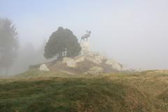 Beaumont Hamel, Newfoundland Memorial, The Somme, France, WW1. (Seckington Images) Tags: flickr ww1 somme