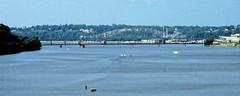 Mississippi River (joeldinda) Tags: 2005 railroad bridge vacation sky cloud fuji dam rail august iowa f10 finepix mississippiriver fujifilm states dubuque railbridge finepixf10 fujifilmfinepixf10 pocketcam 0982