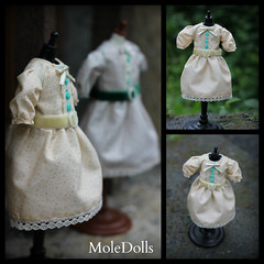 New MoleDolls Dresses for Blythe dolls, Liccas, Dals, Byuls...