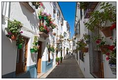 Rondreis door Andalusi, Spanje - april/mei 2015 ... (Martha de Jong-Lantink) Tags: spain spanje 2015 andalusi priegodecrdoba rondreisandalusi srccultuurvakanties rondreissrchetandereandalusi