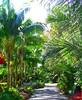 ~Oct 2009 Fairchild Gardens #5~ (endemanf) Tags: miamiflorida fairchildbotanicalgardens tropicallandscapes tropicaljunglegardens