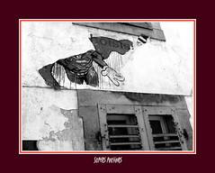 Supers pouvoirs (Chti-breton) Tags: collage abandon fentre volet persienne