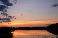 opkomende zon bij kreek Westkapelle (Omroep Zeeland) Tags: natuur wolken zeeland zee duinen zon westkapelle ochtend weer walcheren kreek gebied opkomende