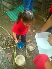 IMG-20160505-05700 (dernst) Tags: jardin huevos cosecha gallinas preescolar