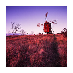 Windmill at Byxelkrok (Theolde) Tags: film fuji hasselblad velvia 50 distagon440