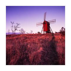 Windmill at Byxelkrok (Theolde) Tags: film fuji hasselblad velvia 50 distagon440
