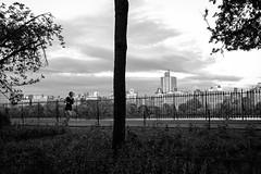 XT1-05-17-15-19-2 (a.cadore) Tags: fujifilmxt1 fujifilm xt1 zeissbiogon28mmf28 biogont2828 zeiss carlzeiss newyorkcity nyc uptown centralpark landscape candid blackandwhite bw