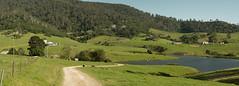 Gulaga idyll (OzzRod) Tags: panorama rural stitch pentax farming bucolic k3 thorium gulaga czjpancolarzebra50mmf18