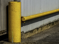 Yellow on grey (Stanlin) Tags: yellow grunge topw