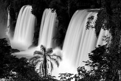CATARATAS DO IGUAZ (EnioCastroMachado) Tags: longexposure bw white black water argentina landscape waterfall exposure falls filter nd cataratas iguazu exposio neutra densidade
