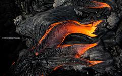 Lava Creatures: The Claw [explored] (carolina_sky) Tags: rock flow fire volcano hawaii lava pentax helicopter bigisland eruption kilauea 2470mm puuoo extremeexposure kilaueanationalpark paradisehelicopters bruceomori pentaxk3ii k3ii