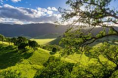 Spring-Green Hillsides (Rod Heywood) Tags: california trees green clouds spring hiking scenic hills trail eastbay mtdiablo oaks ebrp springtime oaktrees greenhills ranching roundvalley ranchland roundvalleyregionalpreserve