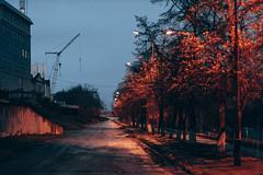 IMG_7601 (iKurbatov) Tags:          ikurbatov