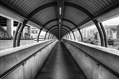 disappearing (Sing Sing Chan) Tags: bridge bw sunshine architecture 35mm canon photography hongkong mood afternoon photographer sunny walkway strong hdr 6d disappear hongkonger singsingchan singsingchangraphy