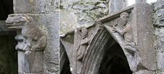 Rosserk Friary Piscina carving details (backpackphotography) Tags: ireland ruins ruin piscina carving mayo carvings friary franciscan rosserkfriary rosserk backpackphotography