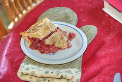 Strawberry Rhubarb Pie - Cooking With George (George - with over 2 mil views - THANKS) Tags: pink roses stilllife usa newyork flower june us spring flora blossom unitedstatesofamerica rochester bloom upstatenewyork newyorkstate bake naturalworld hdr westernnewyork strawberryrhubarbpie urbanliving floralmotif photomatixpro urbancolor photogeorge cookingwithgeorge nikond750 acdseeultimate8