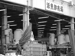 IMGP8206 (SY Huang) Tags: bw fish japan tokyo market tsukiji   fishmarket  tsukijifishmarket