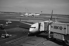 JFK Airport (Xu@EVIL Cameras) Tags: white black berlin 35mm airport jfk voss f28 exakta piesker