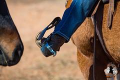 20160423-2ADU-016 Pferderennen in Yunta