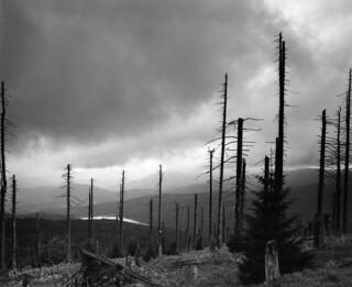 View from Mt. Rachel