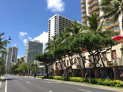 Waikiki Spam Jam 2015 (hawaii) Tags: hawaii meetup waikiki spam honolulu socialmedia spamjam waikikispamjam tweetup hashtags