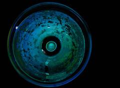 Late harvest Chardonnay (Zyklon94) Tags: blue white black color colour green glass wine liquid chardonnay girlfriendsnikon