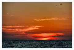 Sarasota Sunset (Timothy Valentine) Tags: sunset vacation beach birds us unitedstates florida sarasota lidokey 0415 2015 clichésaturday