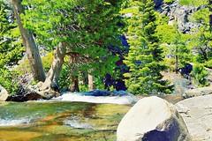 The top of Eagle Falls (Explore Jun 1, 2015 #200) (Joe Lach) Tags: california trees water waterfall rocks laketahoe pines sierranevada watercourse eldoradocounty rushingwater eaglefalls flowingwater emeraldbaystatepark waterpictorial eaglefallslaketahoecalifornia joelach