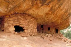 Cedar Mesa Ruins (BLMUtah) Tags: cliff southwest history home archaeology utah ruins respect indian culture lodge american cedar sweat navajo artifact mesa kiva protect blm dwelling pictograph puebloan sherd respectandprotect