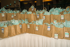 Grab Bags full of surprise items at LCS Spring Gala (Lydia's Style Magazine) Tags: familyphotographer sportsphotographer seniorportraitphotographer fortcollinsphotographer northerncoloradophotographer photosbyadell