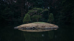 // the eternal internal island (pnwbot) Tags: park tree nature island reflecting tokyo peaceful calm refelction shijuku