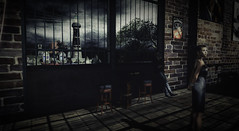 When The Moon is Down (THE WOLF FR) Tags: club landscape blues secondlife