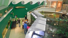Landesmuseum-005